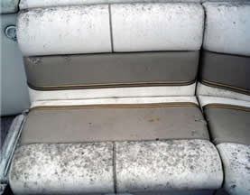 prevent mildew damage to boat seats