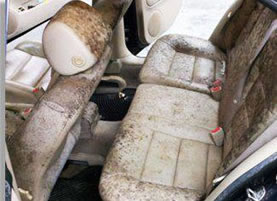 How To Mold Out Of The Inside Of A Car >> Protect Your Car S Interior From Mold Mildew Odors With Dri It